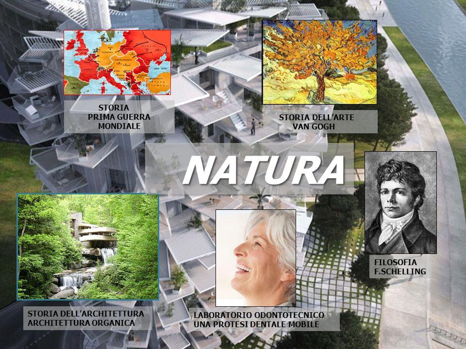 FILOSOFIA F.SCHELLING STORIA DELL'ARCHITETTURA ARCHITETTURA ORGANICA NATURANATURA STORIA DELL'ARTE VAN GOGH STORIA PRIMA GUERRA MONDIALE LABORATORIO O