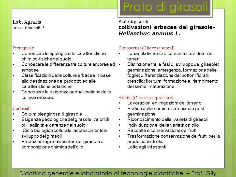 Didattica generale e laboratorio di tecnologie didattiche – Prof. Gily Lab. Agraria ore settimanali: 3 Prato di girasoli: coltivazioni erbacee del gir