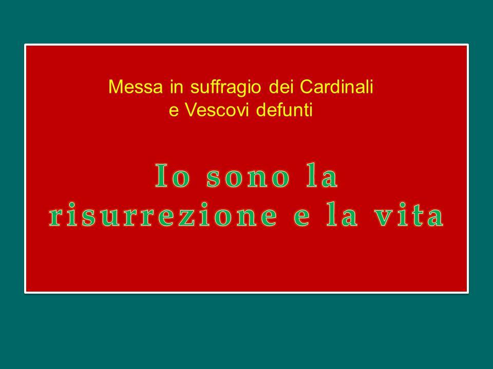 Rinnovando la tradizione, noi oggi offriamo il Sacrificio eucaristico in suffragio dei nostri Fratelli Cardinali e Vescovi defunti negli ultimi dodici mesi.