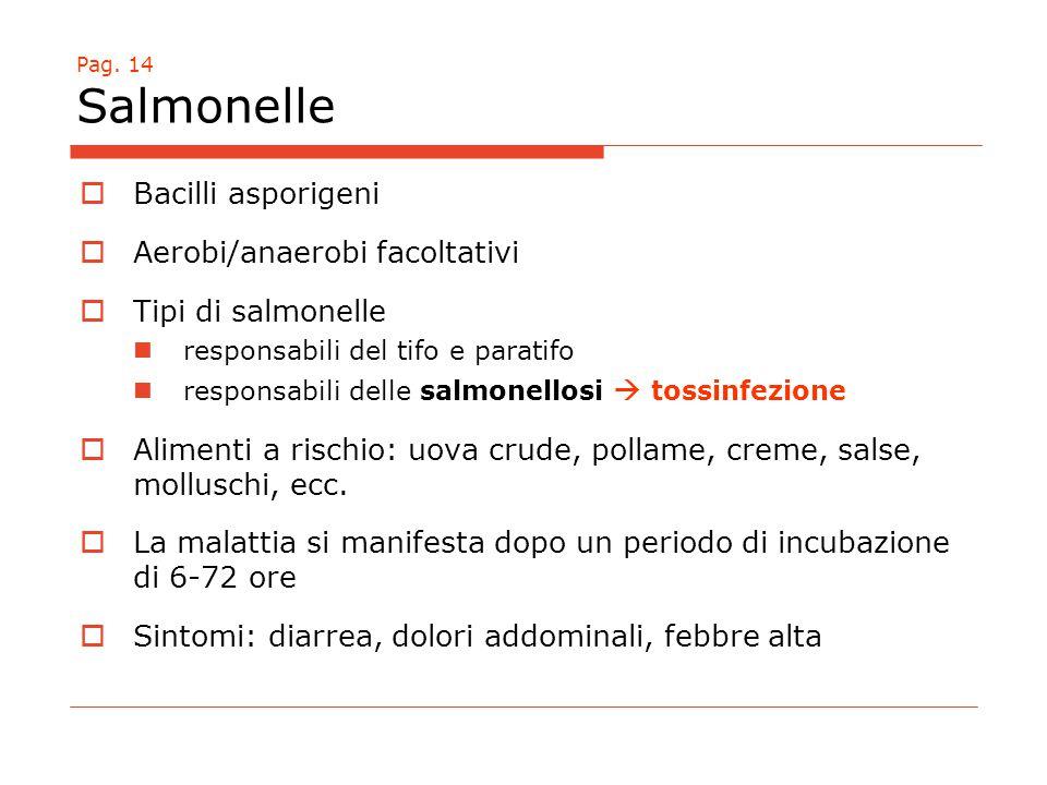 Pag. 14 Salmonelle  Bacilli asporigeni  Aerobi/anaerobi facoltativi  Tipi di salmonelle responsabili del tifo e paratifo responsabili delle salmone
