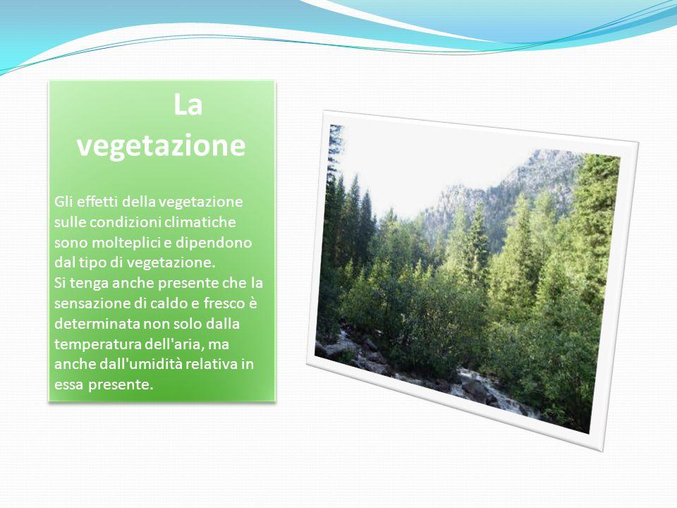 La vegetazione Gli effetti della vegetazione sulle condizioni climatiche sono molteplici e dipendono dal tipo di vegetazione. Si tenga anche presente