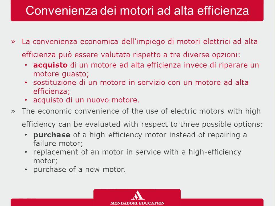 »La convenienza economica dell'impiego di motori elettrici ad alta efficienza può essere valutata rispetto a tre diverse opzioni: acquisto di un motore ad alta efficienza invece di riparare un motore guasto; sostituzione di un motore in servizio con un motore ad alta efficienza; acquisto di un nuovo motore.