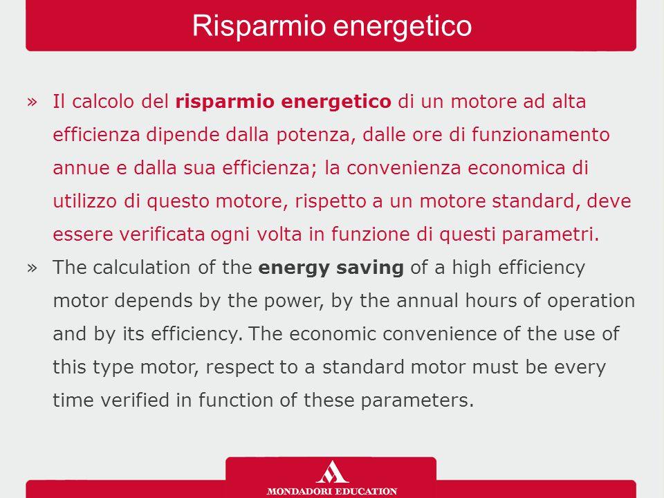 »Il calcolo del risparmio energetico di un motore ad alta efficienza dipende dalla potenza, dalle ore di funzionamento annue e dalla sua efficienza; la convenienza economica di utilizzo di questo motore, rispetto a un motore standard, deve essere verificata ogni volta in funzione di questi parametri.