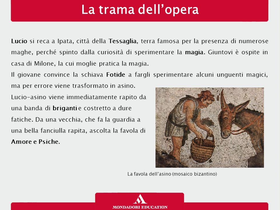 La trama dell'opera Lucio si reca a Ipata, città della Tessaglia, terra famosa per la presenza di numerose maghe, perché spinto dalla curiosità di spe
