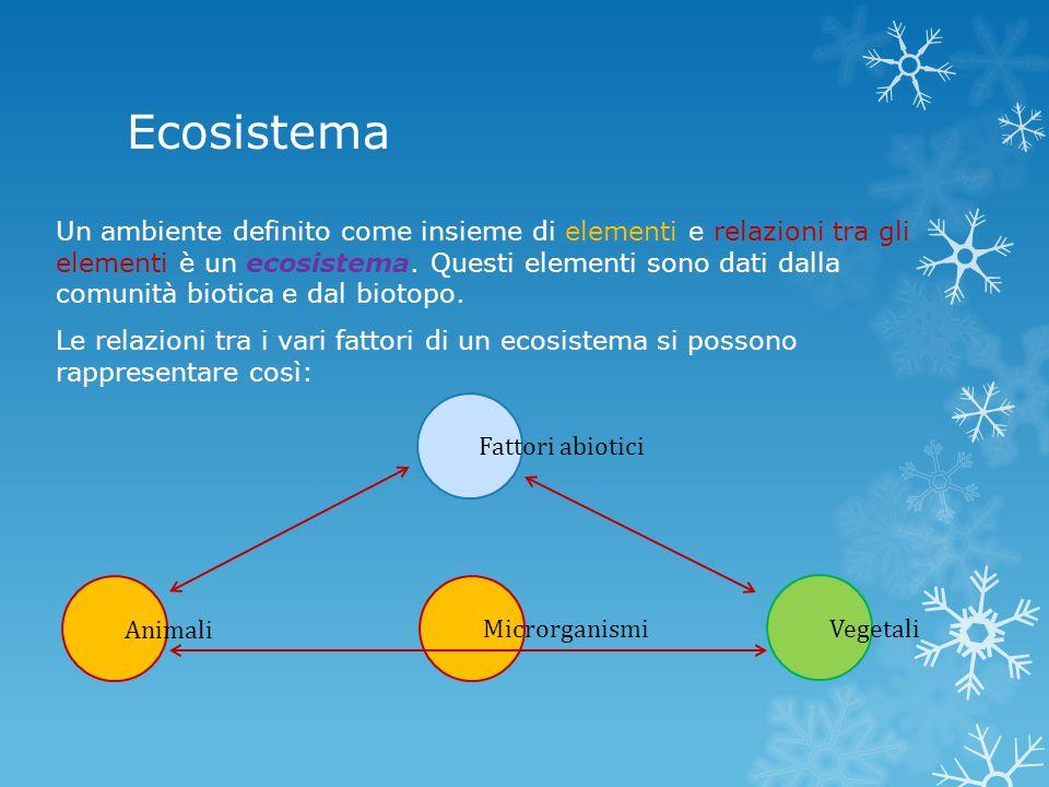 Ecosistema Un ambiente definito come insieme di elementi e relazioni tra gli elementi è un ecosistema. Questi elementi sono dati dalla comunità biotic