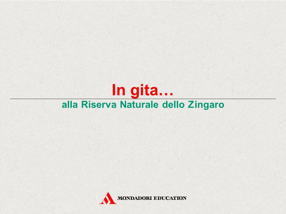 In gita… alla Riserva Naturale dello Zingaro Che cos'è una Riserva naturale.
