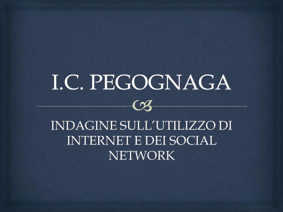 INDAGINE SULL'UTILIZZO DI INTERNET E DEI SOCIAL NETWORK