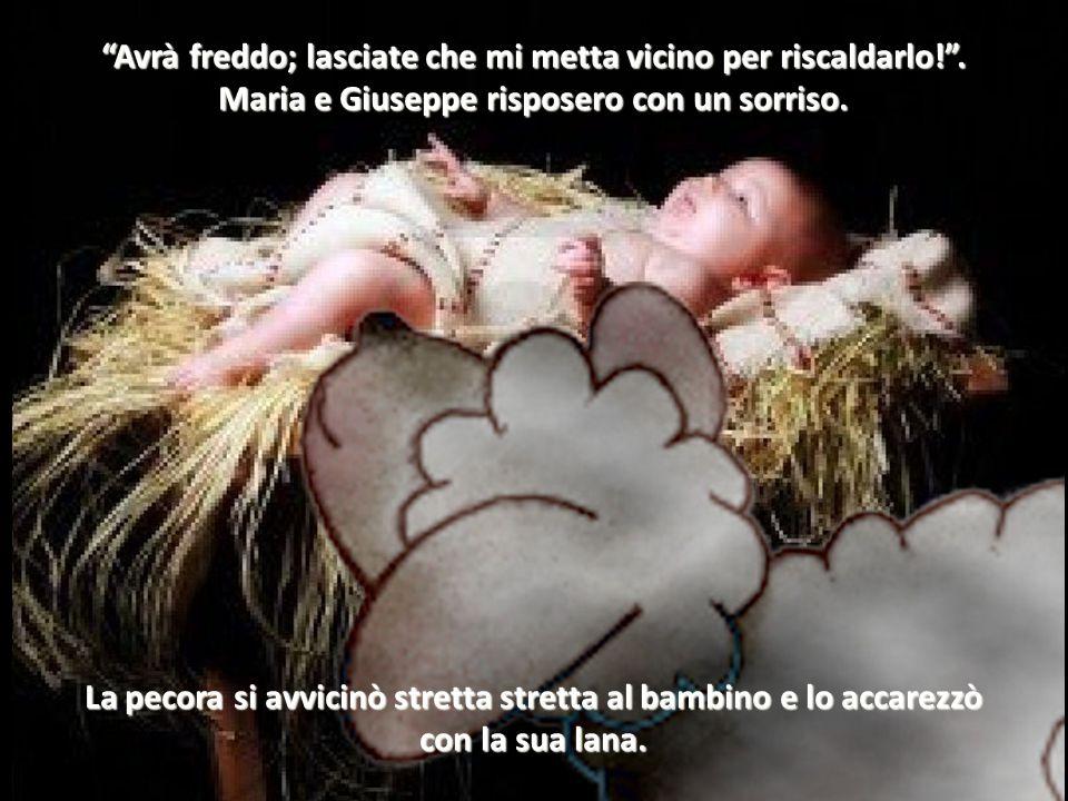 """Proprio qui ci è nato un bel bambino. Eccolo!"""". La pecora nera era piena di gioia. Prima di tutte le altre poteva vedere il piccolo Gesù."""