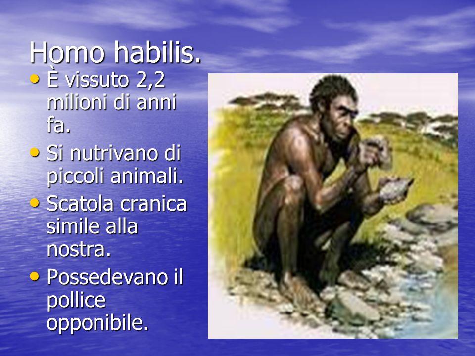 Homo habilis. È vissuto 2,2 milioni di anni fa. Si nutrivano di piccoli animali. Scatola cranica simile alla nostra. Possedevano il pollice opponibile