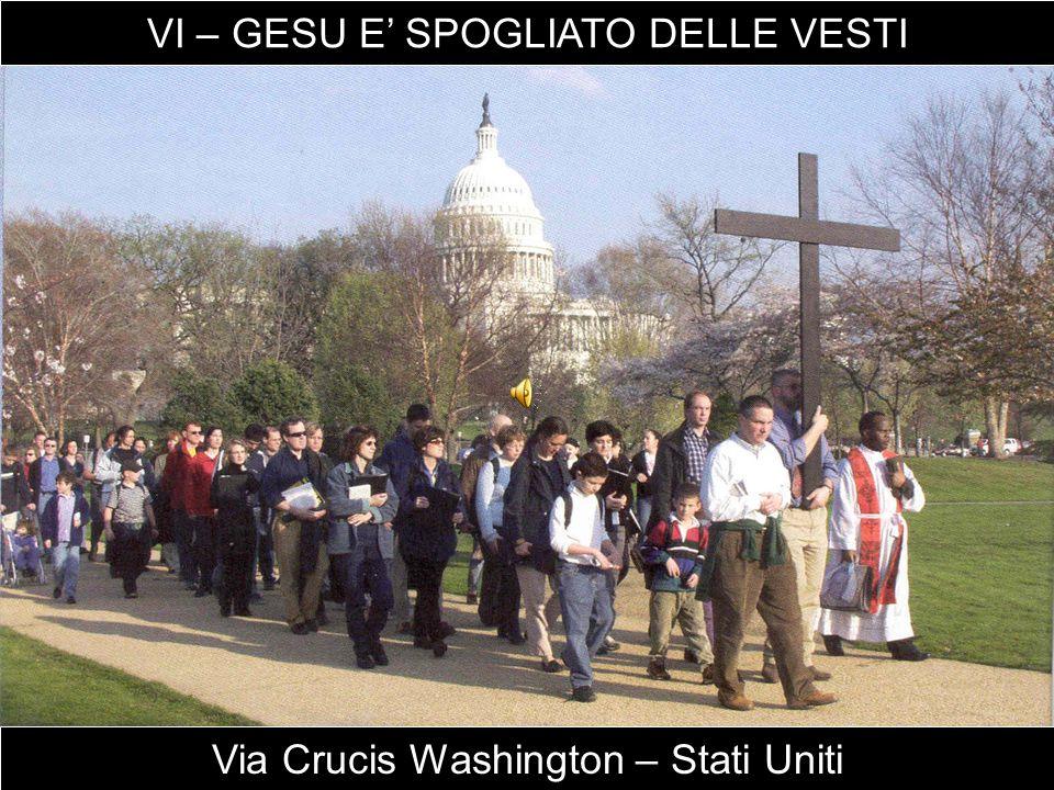 Via Crucis Washington – Stati Uniti VI – GESU E' SPOGLIATO DELLE VESTI
