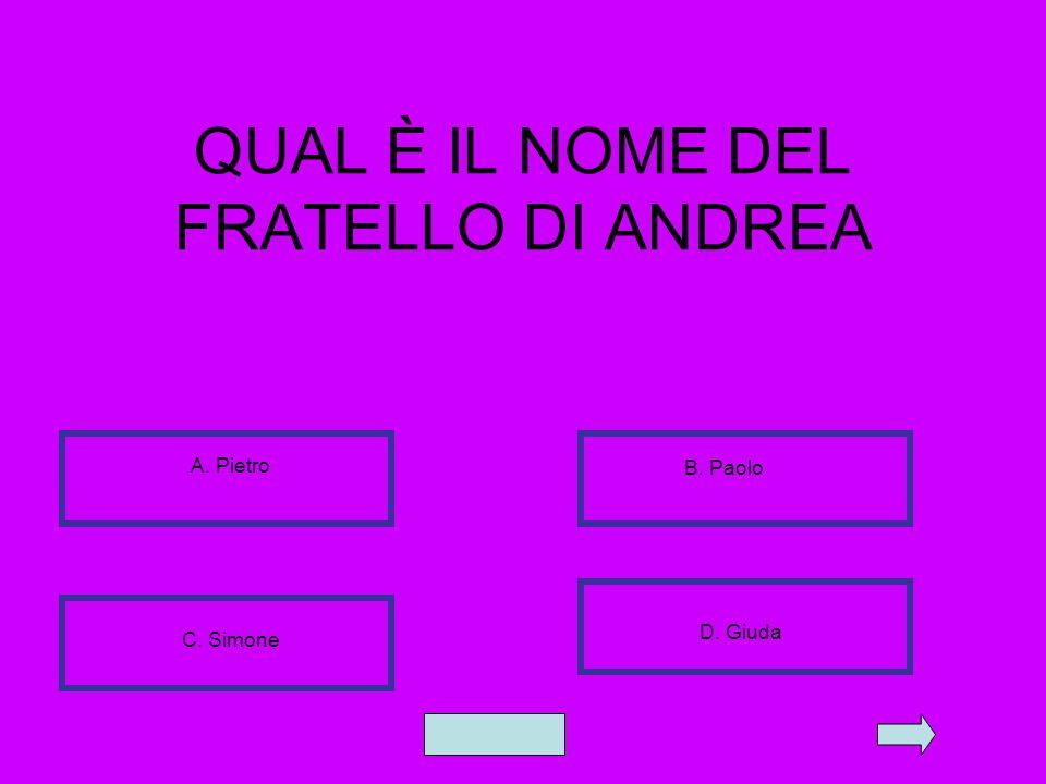 QUAL È IL NOME DEL FRATELLO DI ANDREA A. Pietro B. Paolo C. Simone D. Giuda
