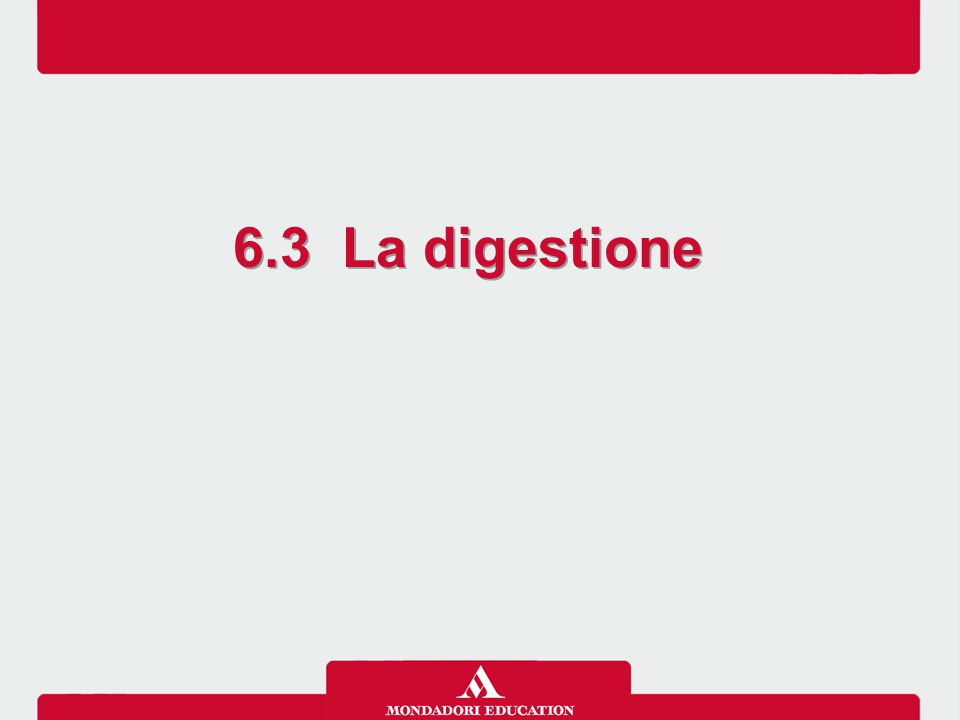 6.3 La digestione