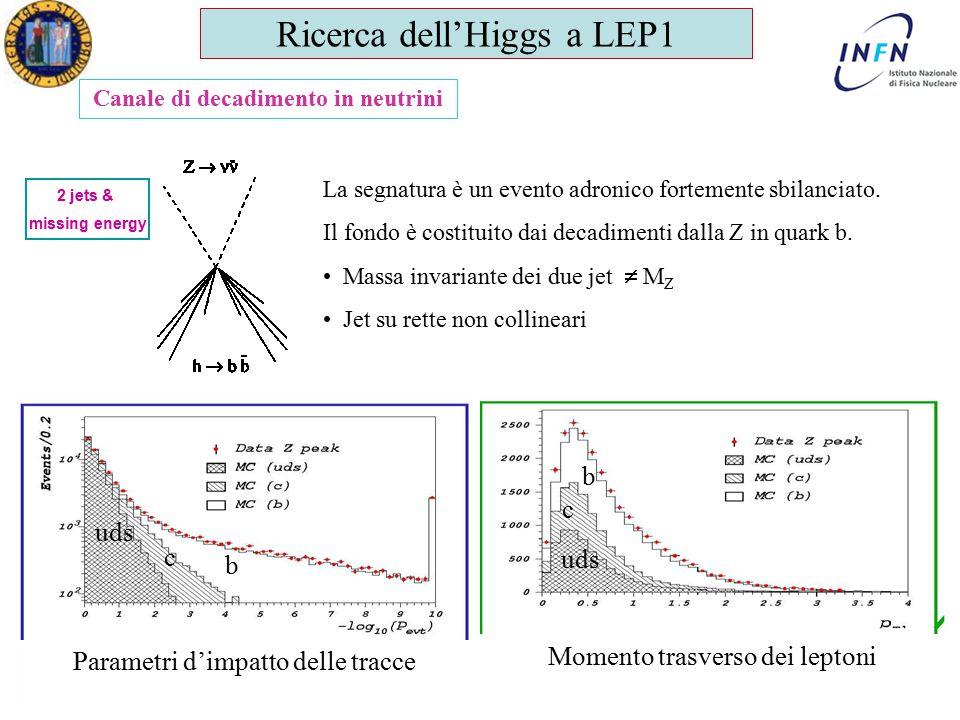 Dottorato in Fisica XXV Ciclo Padova 12 Aprile 2011 Ezio Torassa Canale di decadimento in neutrini 2 jets & missing energy La segnatura è un evento adronico fortemente sbilanciato.