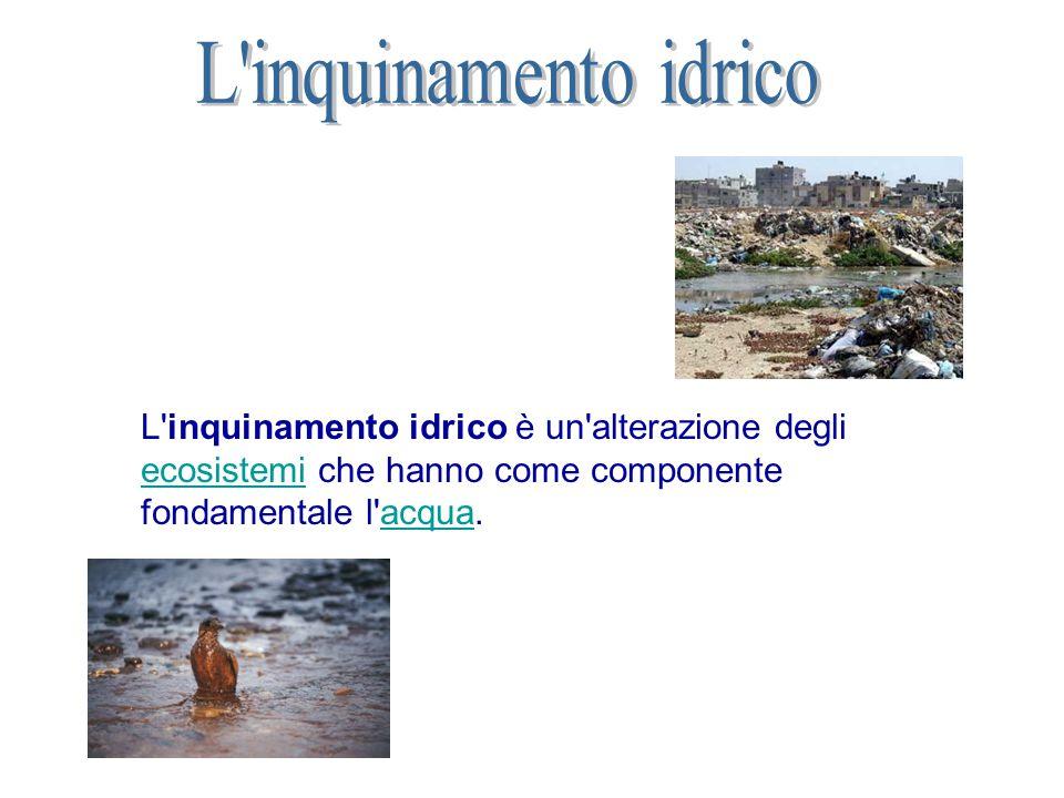 L inquinamento idrico è un alterazione degli ecosistemi che hanno come componente fondamentale l acqua.
