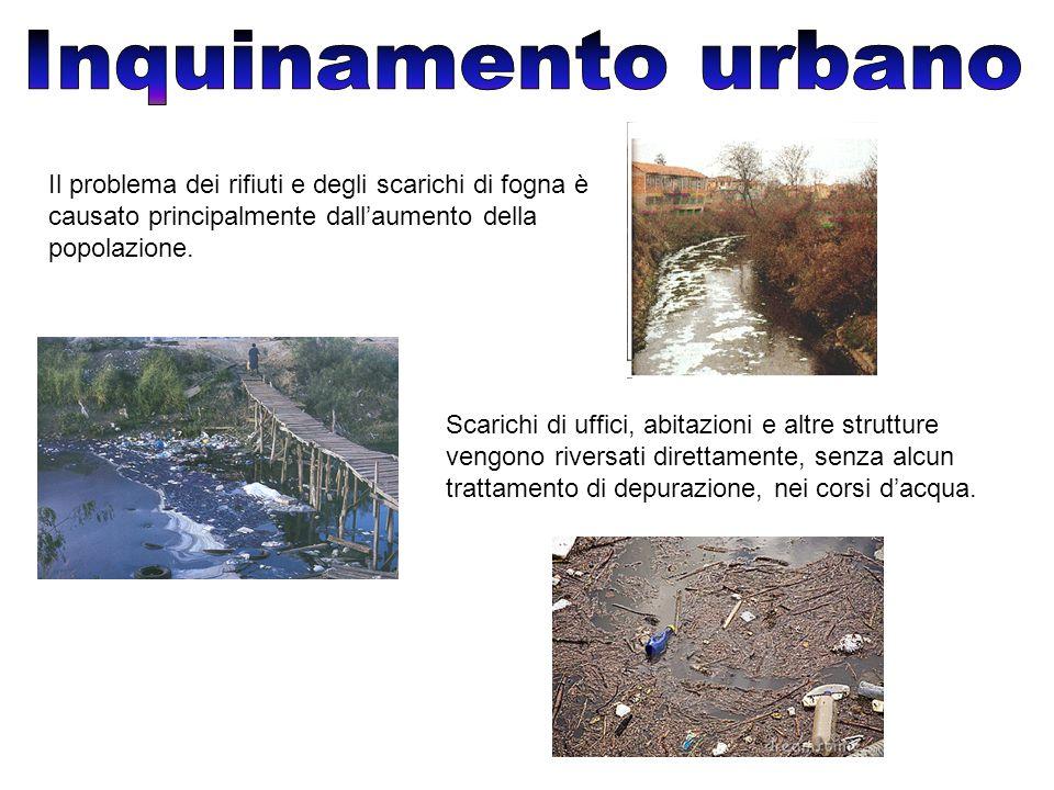 Il problema dei rifiuti e degli scarichi di fogna è causato principalmente dall'aumento della popolazione.