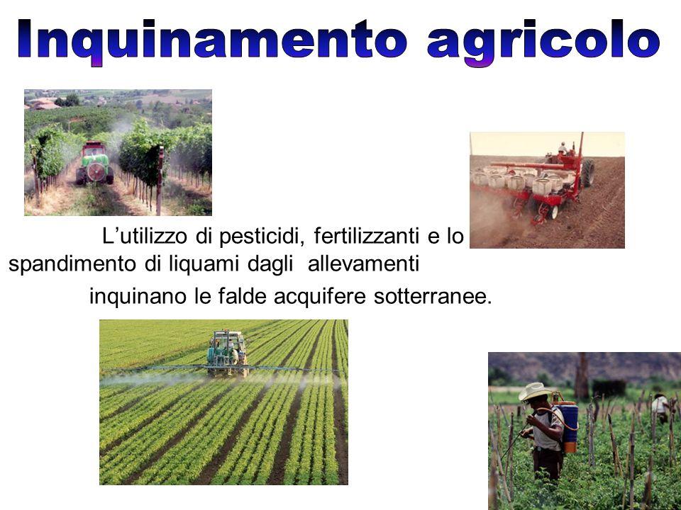 L'utilizzo di pesticidi, fertilizzanti e lo spandimento di liquami dagli allevamenti inquinano le falde acquifere sotterranee.