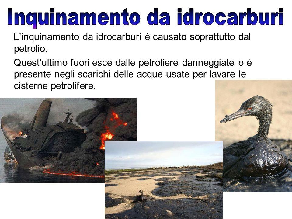 L'inquinamento da idrocarburi è causato soprattutto dal petrolio.