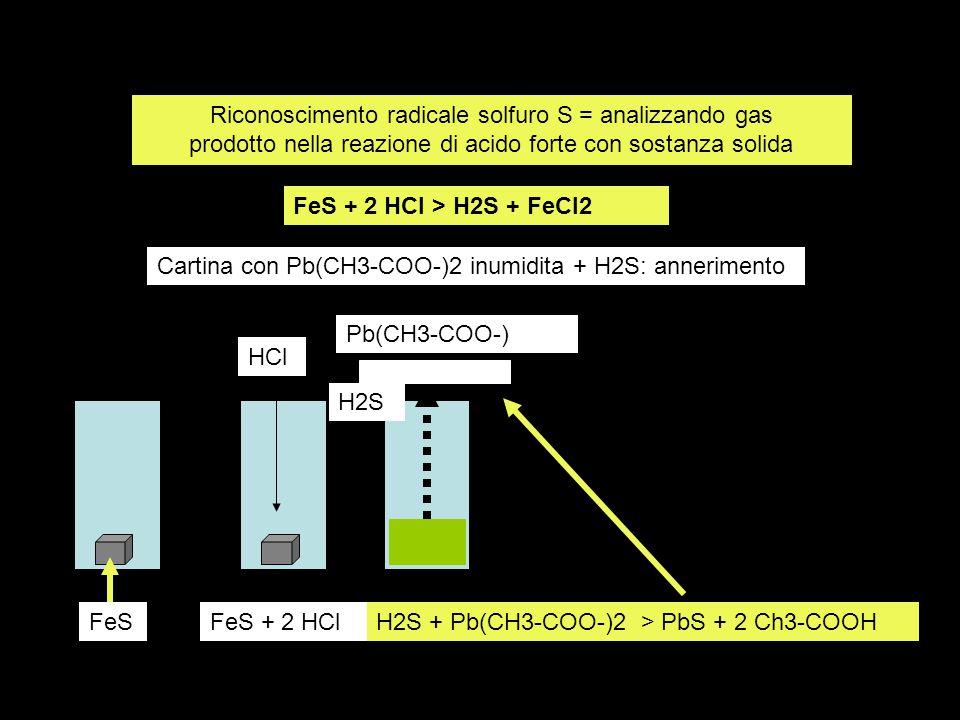 Riconoscimento radicale solfuro S = analizzando gas prodotto nella reazione di acido forte con sostanza solida FeS + 2 HCl > H2S + FeCl2 H2S + Pb(CH3-COO-)2 > PbS + 2 Ch3-COOHFeSFeS + 2 HCl HCl Pb(CH3-COO-) H2S Cartina con Pb(CH3-COO-)2 inumidita + H2S: annerimento