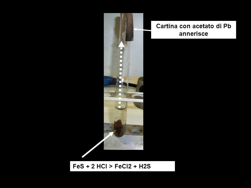 FeS + 2 HCl > FeCl2 + H2S Cartina con acetato di Pb annerisce