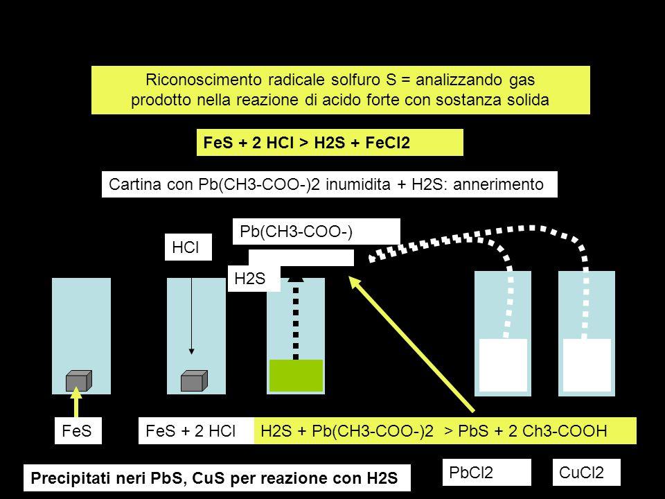 Riconoscimento radicale solfuro S = analizzando gas prodotto nella reazione di acido forte con sostanza solida FeS + 2 HCl > H2S + FeCl2 H2S + Pb(CH3-COO-)2 > PbS + 2 Ch3-COOHFeSFeS + 2 HCl HCl Pb(CH3-COO-) H2S Cartina con Pb(CH3-COO-)2 inumidita + H2S: annerimento PbCl2CuCl2 Precipitati neri PbS, CuS per reazione con H2S
