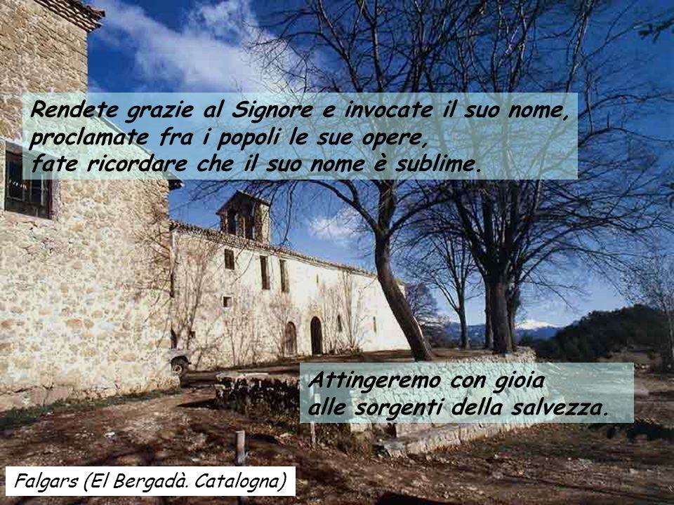 Falgars (El Bergadà.Catalogna) Attingeremo con gioia alle sorgenti della salvezza.