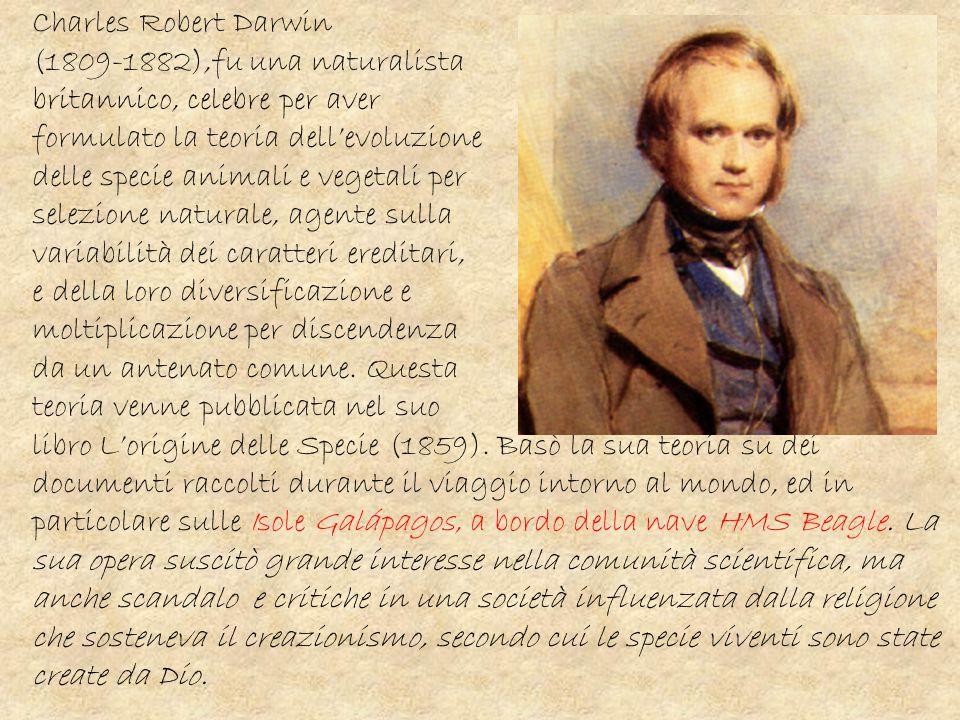 Charles Robert Darwin (1809-1882),fu una naturalista britannico, celebre per aver formulato la teoria dell'evoluzione delle specie animali e vegetali