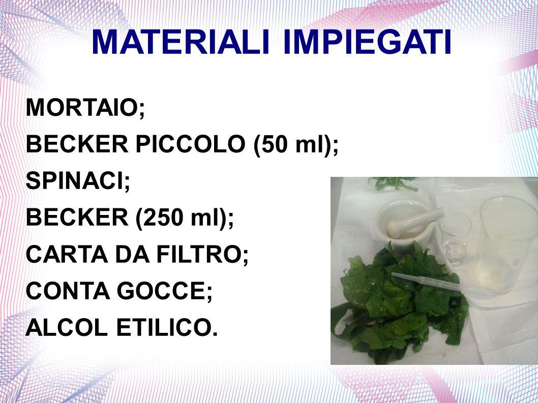MATERIALI IMPIEGATI MORTAIO; BECKER PICCOLO (50 ml); SPINACI; BECKER (250 ml); CARTA DA FILTRO; CONTA GOCCE; ALCOL ETILICO.