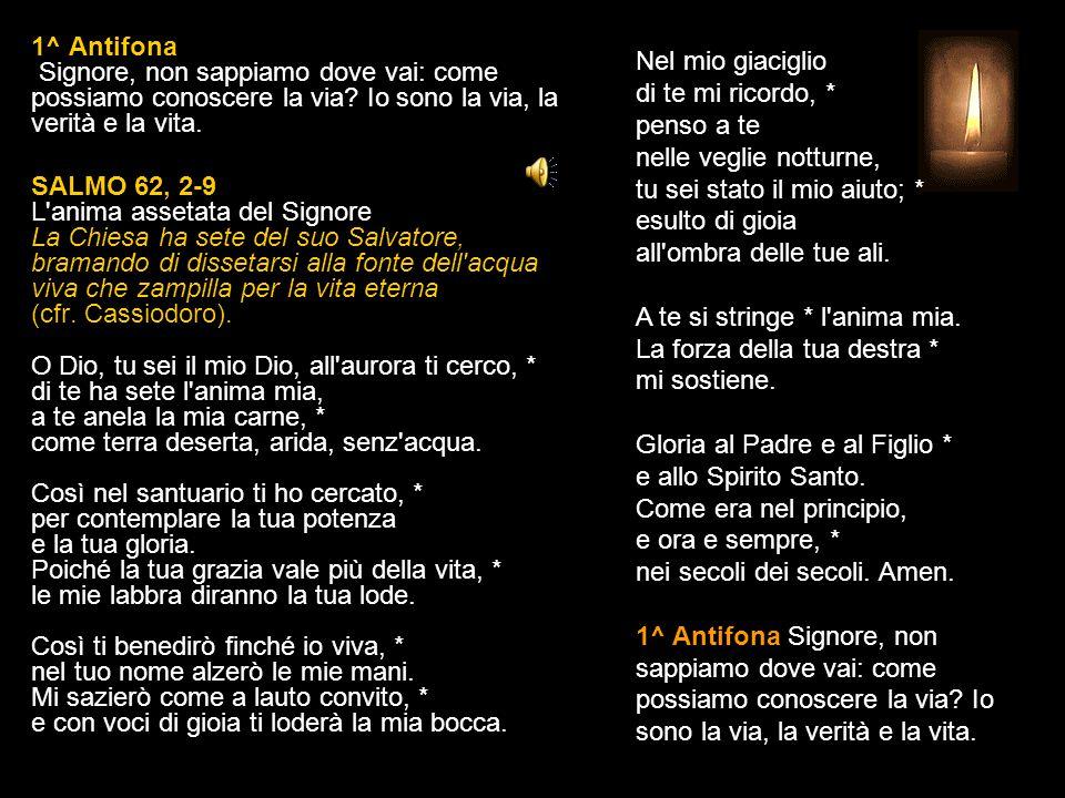 3 LUGLIO 2015 VENERDÌ - SAN TOMMASO Apostolo LODI V.