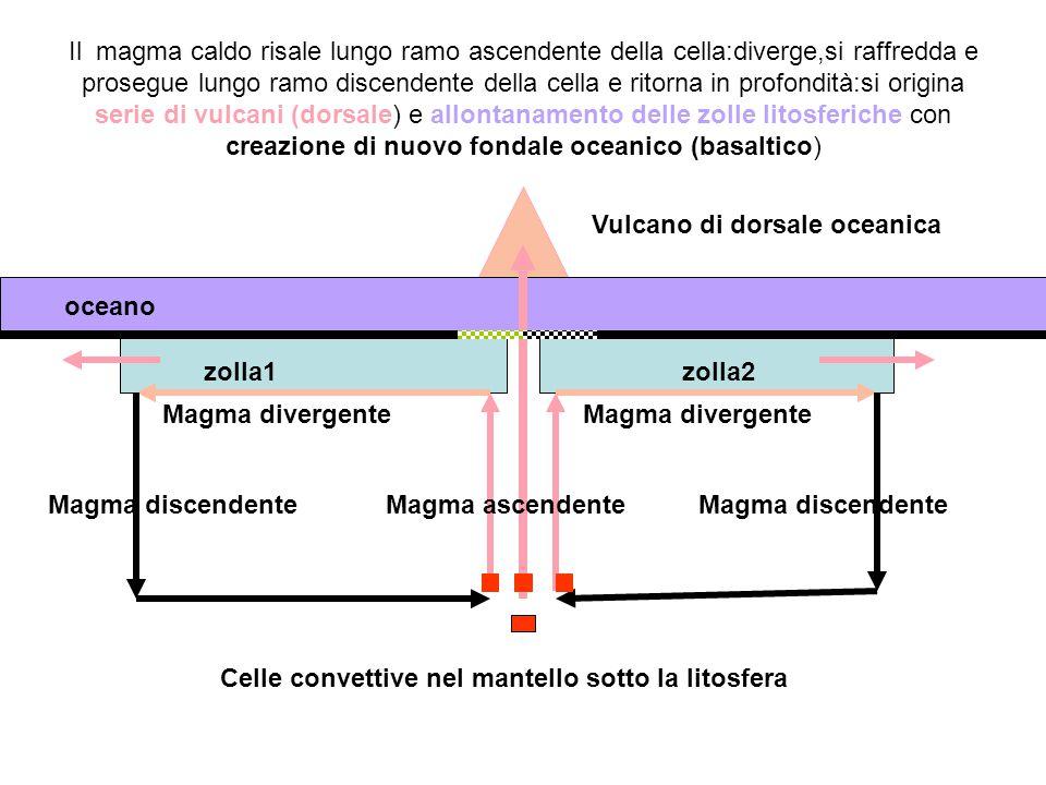 zolla1zolla2 oceano Celle convettive nel mantello sotto la litosfera Vulcano di dorsale oceanica Magma ascendenteMagma discendente Magma divergente Il magma caldo risale lungo ramo ascendente della cella:diverge,si raffredda e prosegue lungo ramo discendente della cella e ritorna in profondità:si origina serie di vulcani (dorsale) e allontanamento delle zolle litosferiche con creazione di nuovo fondale oceanico (basaltico)