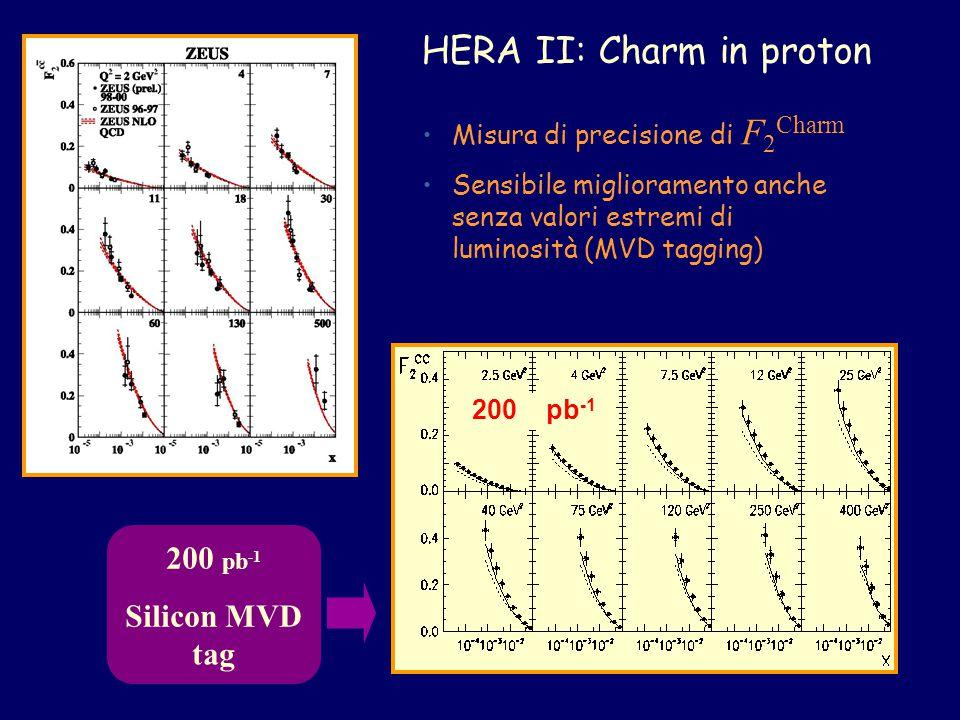 HERA II: Charm in proton 200 pb -1 Silicon MVD tag Misura di precisione di F 2 Charm Sensibile miglioramento anche senza valori estremi di luminosità (MVD tagging) 200 pb -1