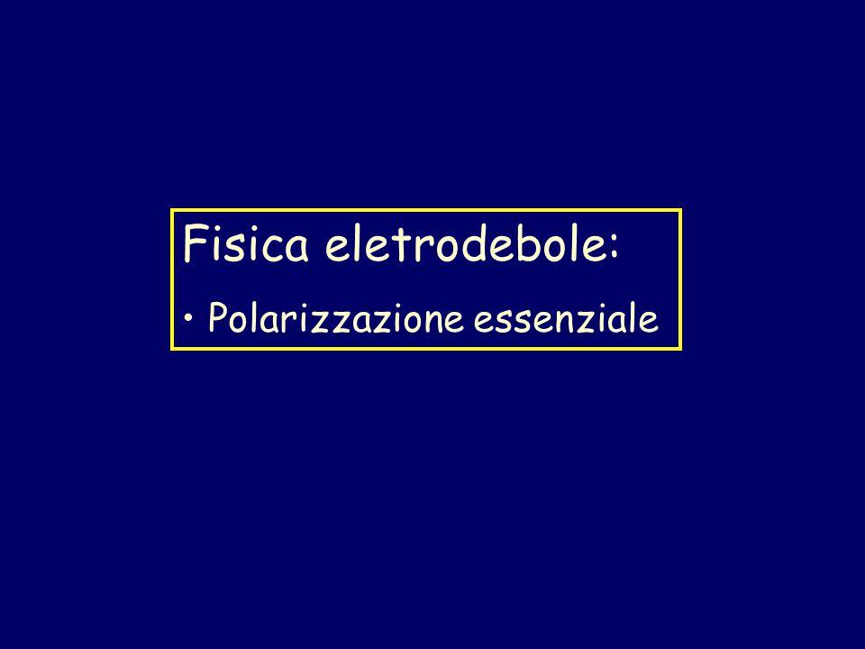 Fisica eletrodebole: Polarizzazione essenziale