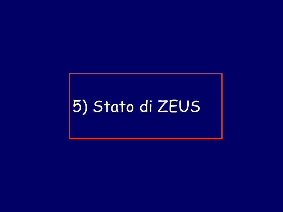 5) Stato di ZEUS