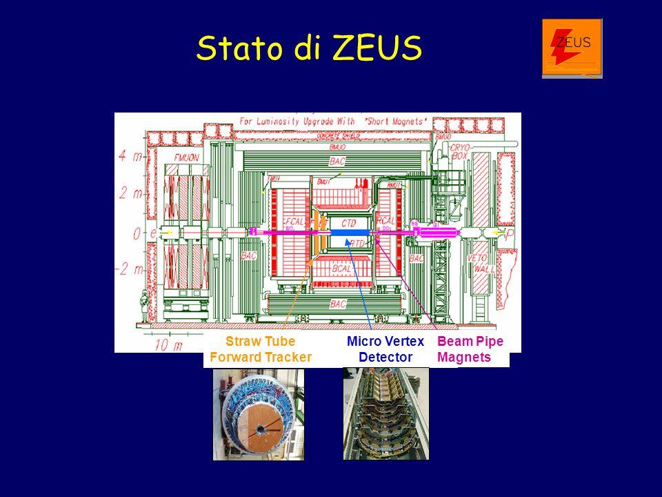 Stato di ZEUS Straw Tube Forward Tracker Micro Vertex Detector Beam Pipe Magnets