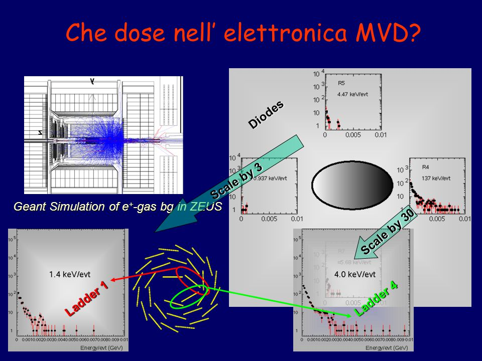 Che dose nell' elettronica MVD? Geant Simulation of e + -gas bg in ZEUS Diodes Ladder 1 Ladder 4 Scale by 30 Scale by 3
