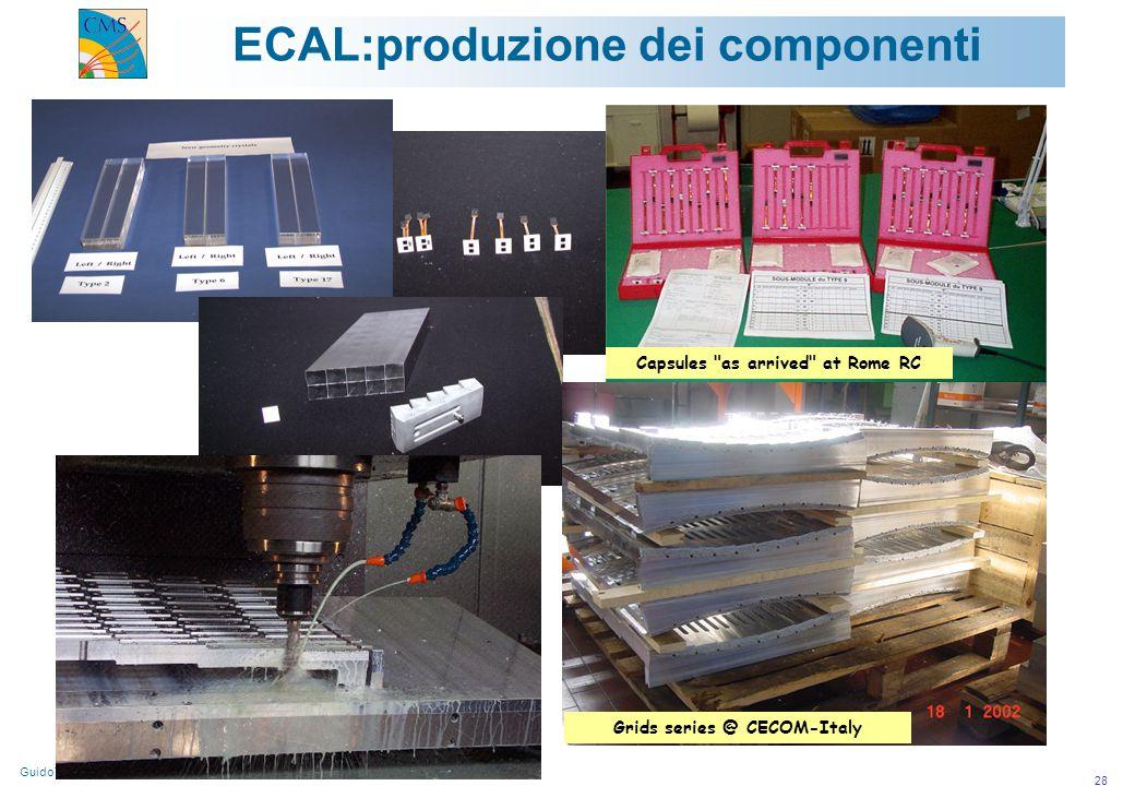 GuidoTonelli/Università di Pisa e INFN/Gruppo1/Roma 26-03-2002 28 ECAL:produzione dei componenti Capsules as arrived at Rome RC Grids series @ CECOM-Italy