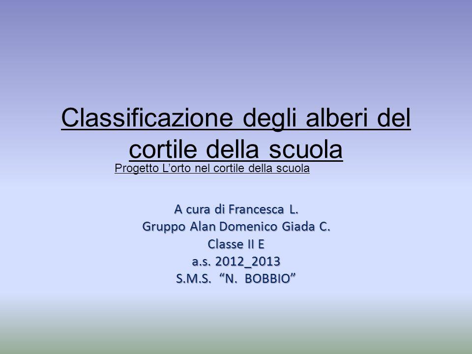 """Classificazione degli alberi del cortile della scuola A cura di Francesca L. Gruppo Alan Domenico Giada C. Classe II E a.s. 2012_2013 S.M.S. """"N. BOBBI"""