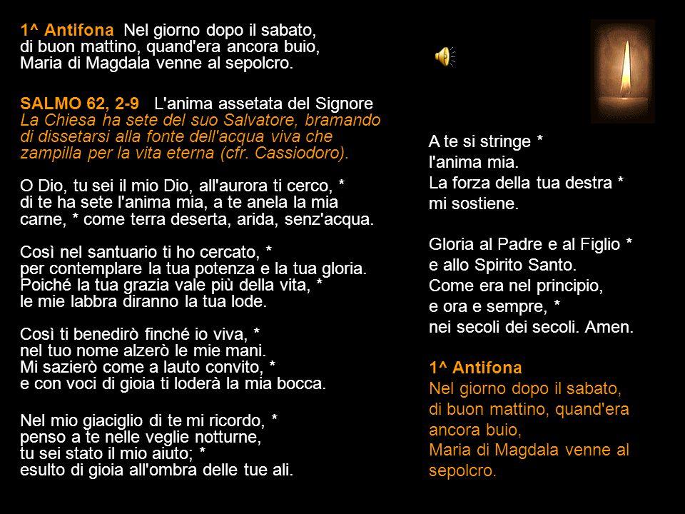 22 LUGLIO 2015 MERCOLEDÌ - IV SETTIMANA DEL SALTERIO DEL T.