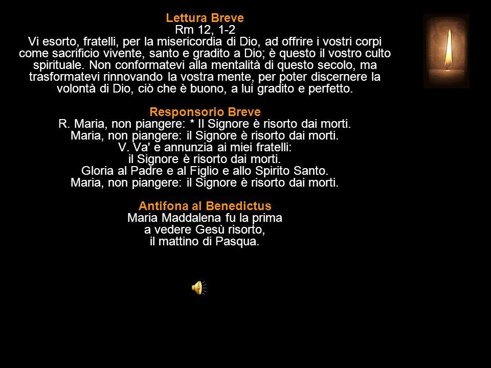 3^ Antifona Piangendo, Maria guardò nella tomba: e vide due angeli vestiti di luce, alleluia.