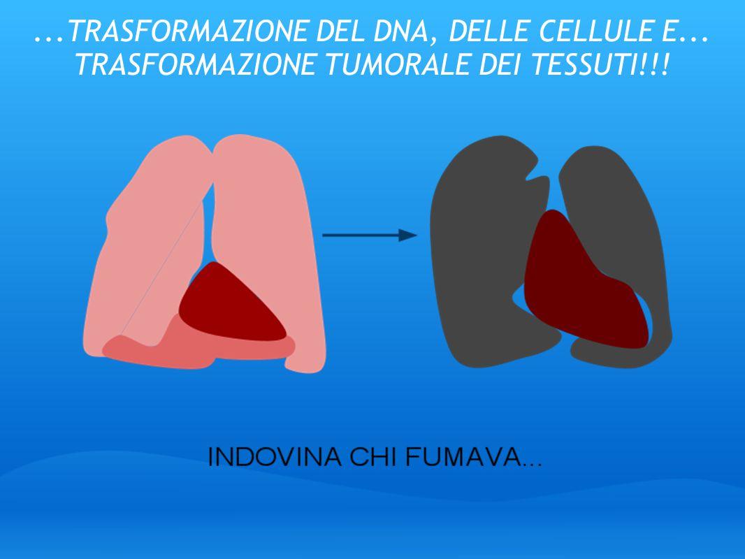 ...TRASFORMAZIONE DEL DNA, DELLE CELLULE E... TRASFORMAZIONE TUMORALE DEI TESSUTI!!!