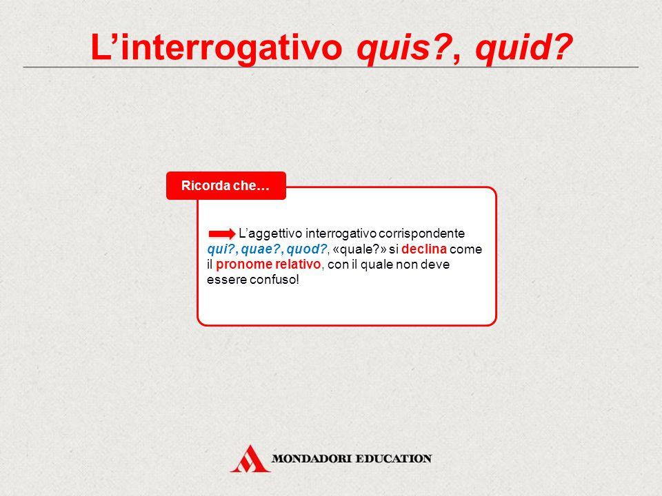 L'aggettivo interrogativo corrispondente qui?, quae?, quod?, «quale?» si declina come il pronome relativo, con il quale non deve essere confuso.