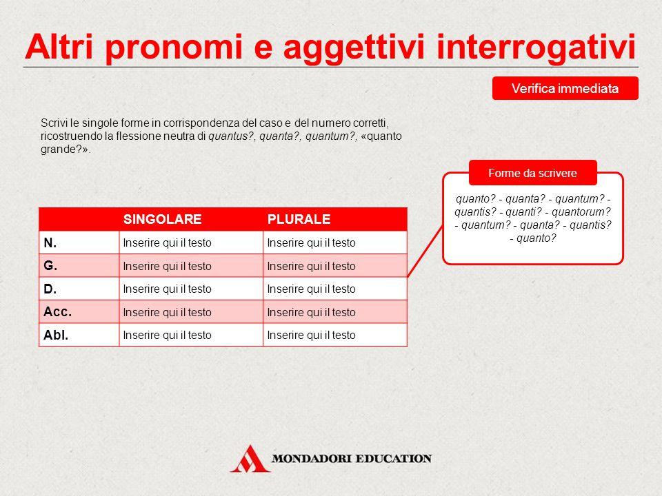 Verifica sommativa Abbina ciascuna forma alla corretta traduzione.