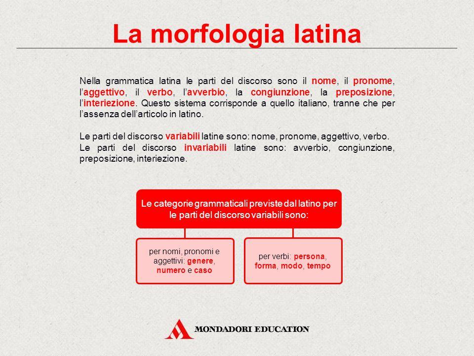 In italiano Le singole unità di cui sono composte le parole si possono classificare in: lessicali (radici o basi lessicali) → recano un significato [a