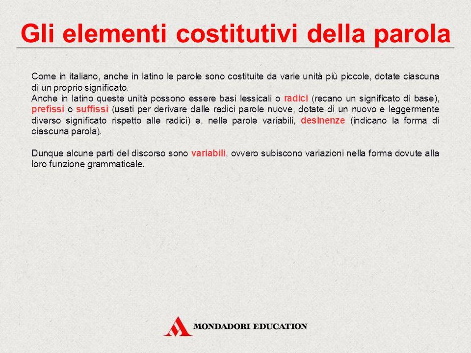 Gli elementi costitutivi della parola Come in italiano, anche in latino le parole sono costituite da varie unità più piccole, dotate ciascuna di un proprio significato.