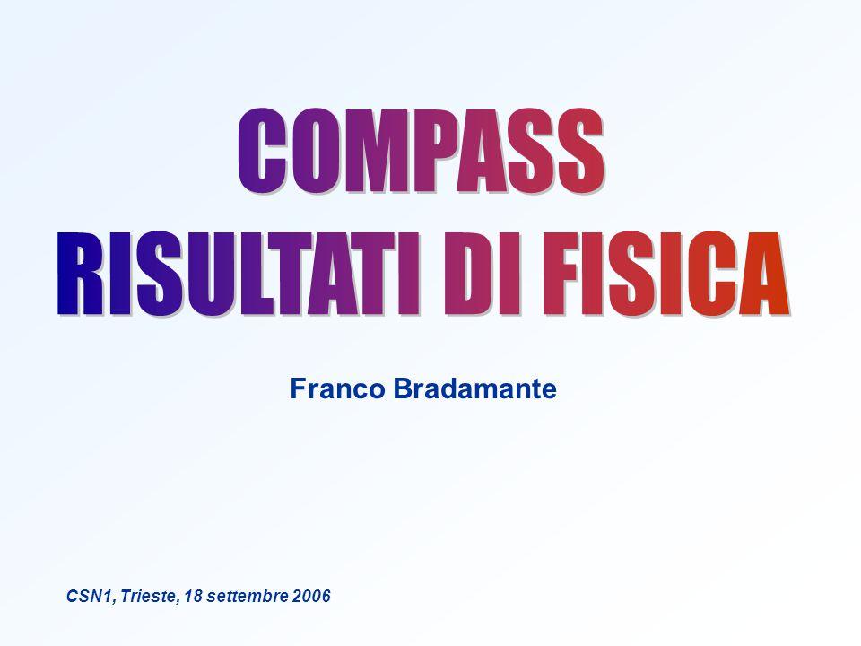 Franco Bradamante CSN1, Trieste, 18 settembre 2006