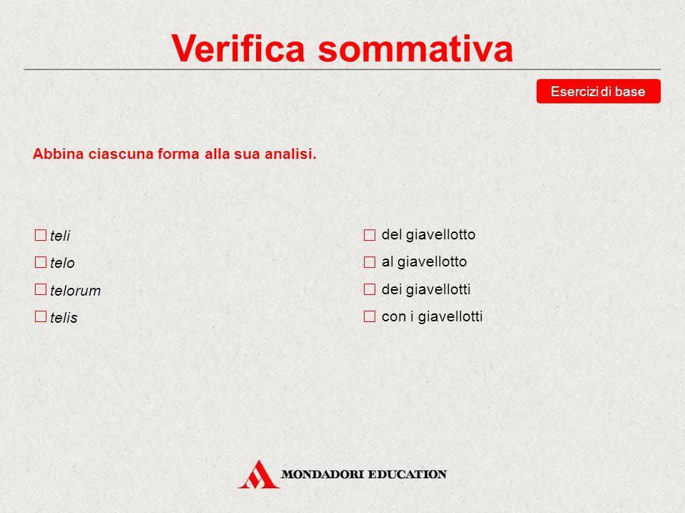 Verifica sommativa Indica quale tra queste risposte è quella corretta. Scegli le traduzioni corrette della forma agrum. del campo il campo (ogg.) dei