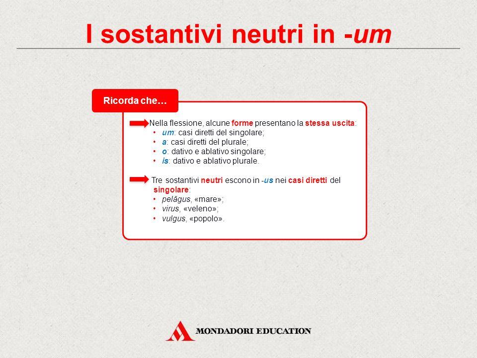 I sostantivi neutri in -um Nella flessione, alcune forme presentano la stessa uscita: um: casi diretti del singolare; a: casi diretti del plurale; o: dativo e ablativo singolare; is: dativo e ablativo plurale.
