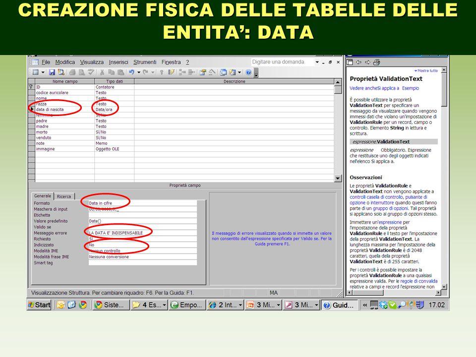 CREAZIONE FISICA DELLE TABELLE DELLE ENTITA': DATA