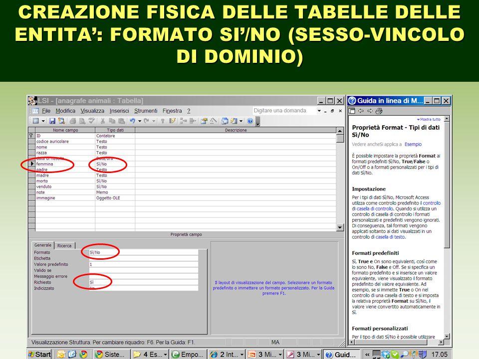 CREAZIONE FISICA DELLE TABELLE DELLE ENTITA': FORMATO SI'/NO (SESSO-VINCOLO DI DOMINIO)