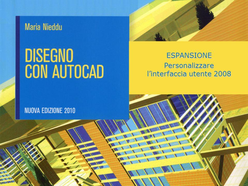 ESPANSIONE Personalizzare l'interfaccia utente 2008