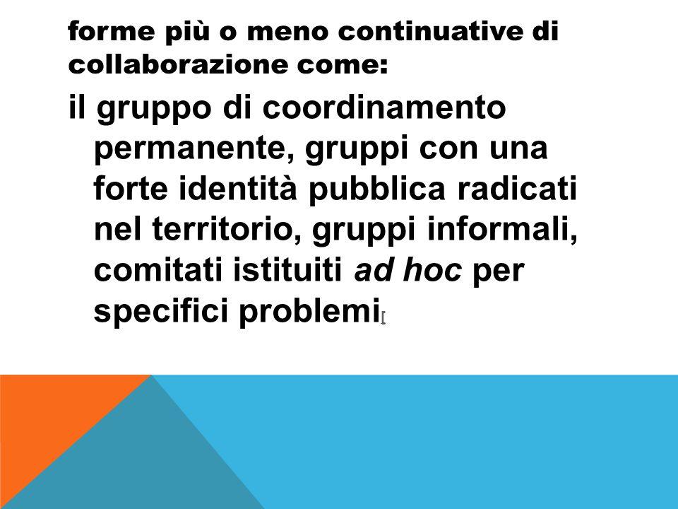 forme più o meno continuative di collaborazione come: il gruppo di coordinamento permanente, gruppi con una forte identità pubblica radicati nel territorio, gruppi informali, comitati istituiti ad hoc per specifici problemi [ [